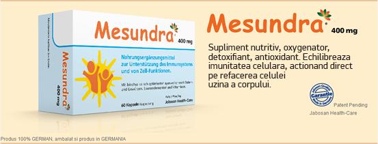 Mesundra